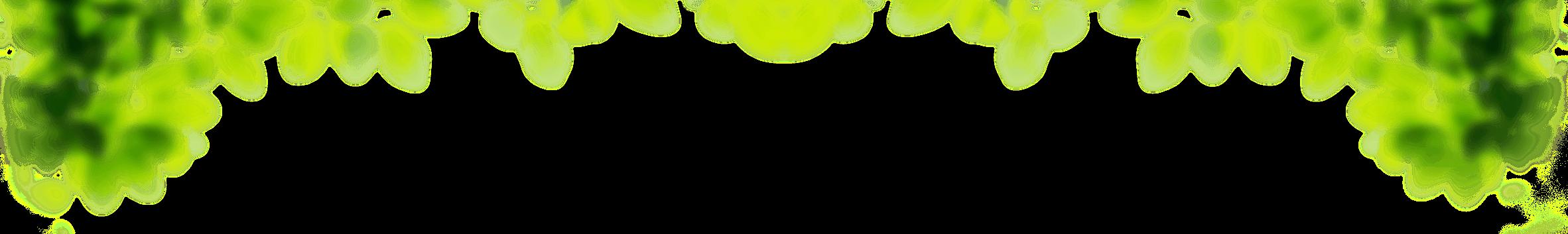 Feuilles détourées floues